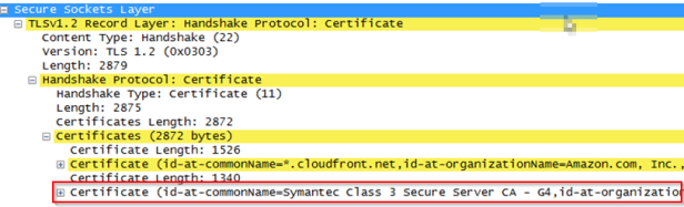 wiresharkcert